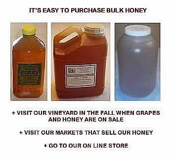 Purchase Michigan Honey
